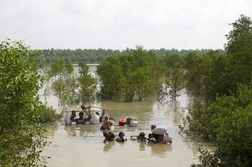 rohingya, shebeen, journalist,