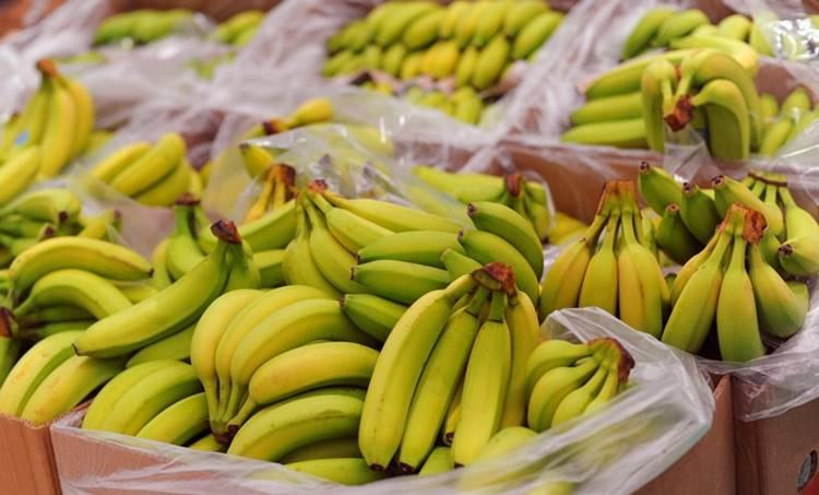 Bananas, ie malayalam