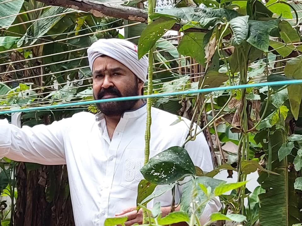 Mohanlal, Mohanlal farming, Mohanlal in organic farming, Mohanlal as a farmer, iemalayalam