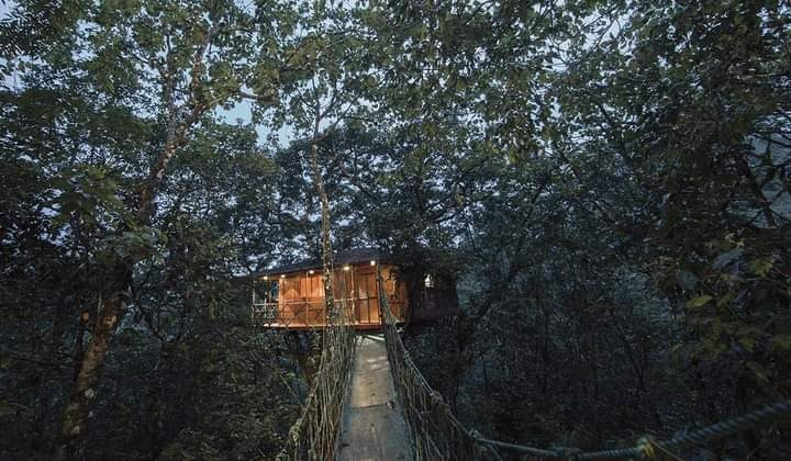 Kerala tree house, munnar tree house, thekkady tree house, wayanad tree house, vythiri tree house, konni tree house